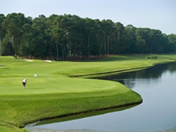 Pet friendly Myrtle Beach's golf courses are the best in the area