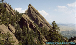 Pet Friendly Hotels Boulder CO - Dog Friendly Hotels Boulder CO