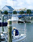 Pet Friendly Hotels Clearwater Beach FL - Dog Friendly Hotels Clearwater Beach FL