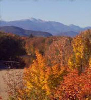 Pet Friendly Hotels White Mountains NH - Dog Friendly Hotels White Mountains NH