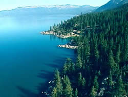 Pet friendly Lake Tahoe